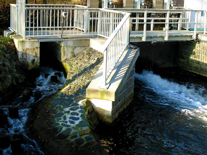 Hochwasserschutz / Wasserbau